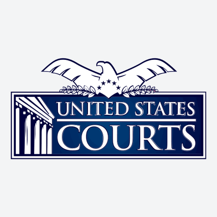 US Courts System